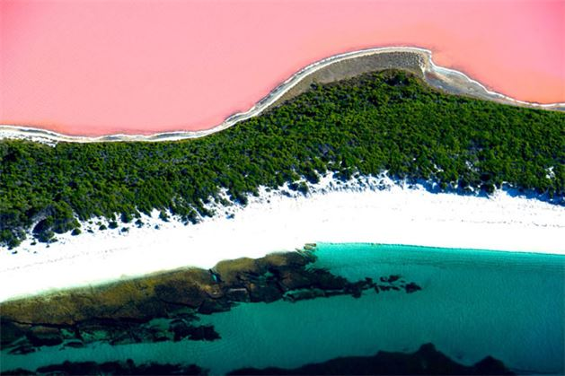 Batı Avustralya'da bulunan Hillier Gölü, pembe rengiyle görenleri hayran bırakıyor. Okyanustan ince bir kumsal ve yeşillik ile ayrılan Hillier gölü, 600 metre uzunluğa sahip.
